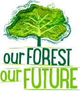 Image result for our forest our future